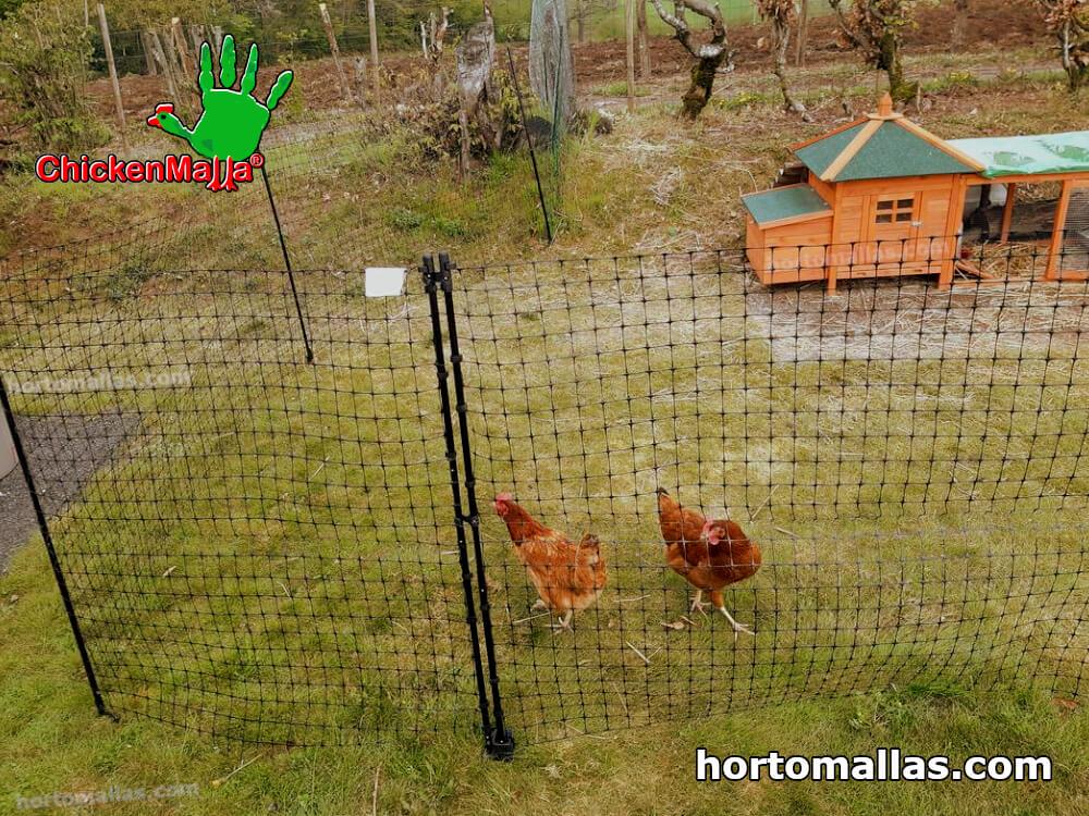 malla avícola en jardín.