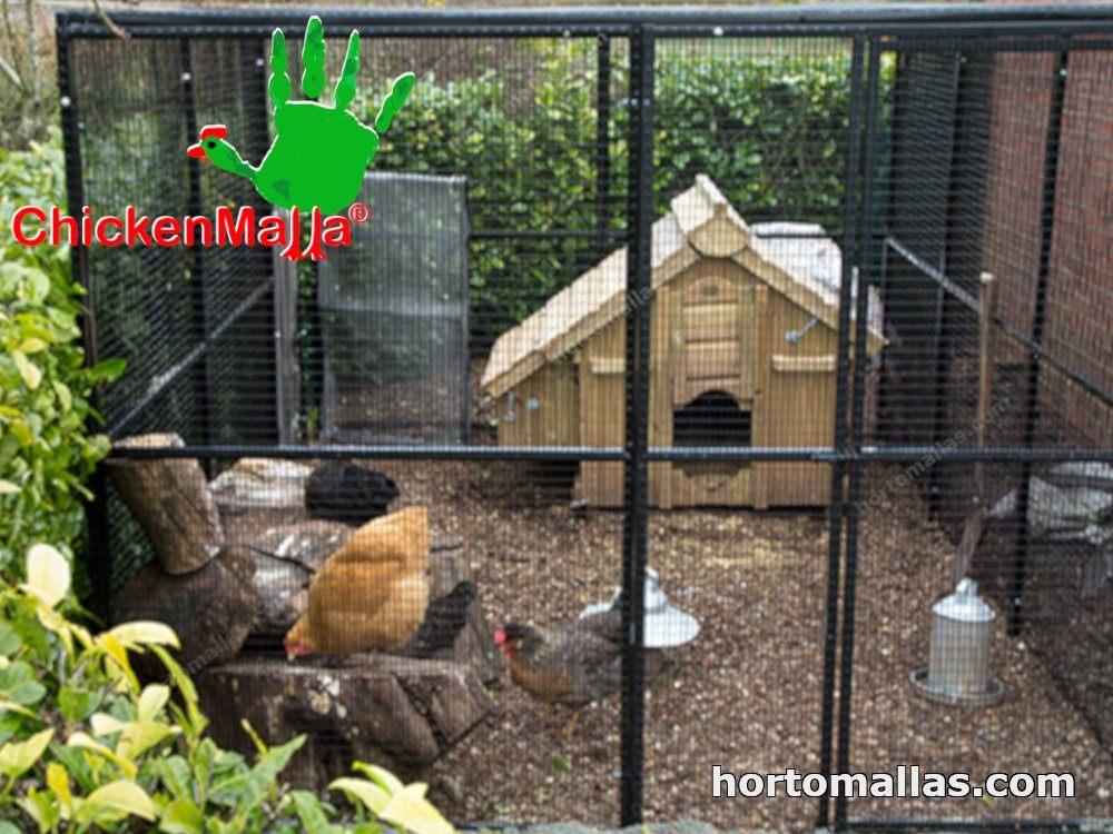 caseta avícola
