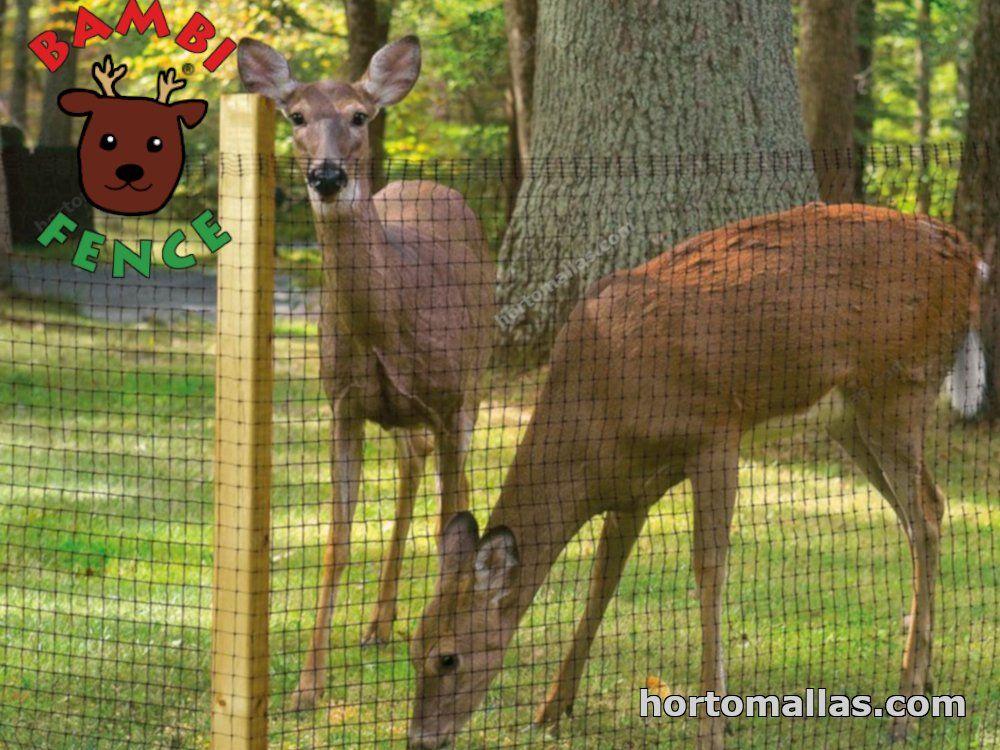 malla contra venados evita el paso de ciervos y invadan tu lugar hogar