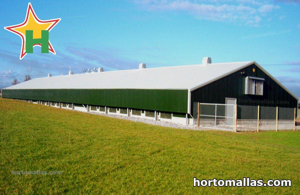 Warehouse for raising chickens with plastic chicken mesh CHICKENMALLA