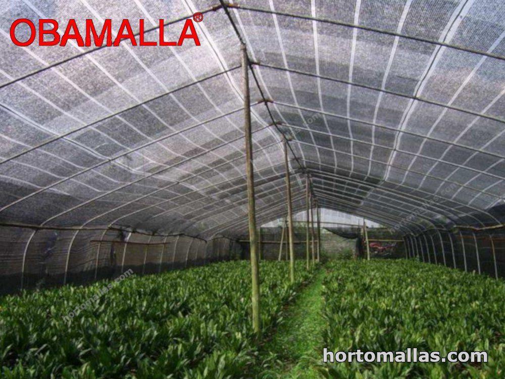 malla para proteger tus cultivos de los rayos UV
