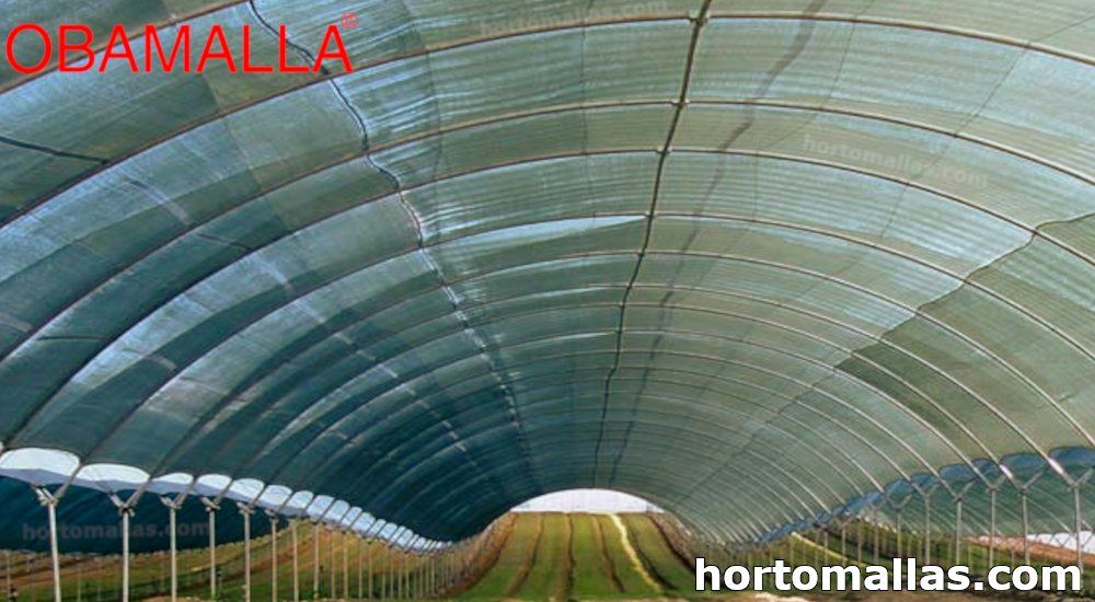 macro túnel cubierto de OBAMALLA