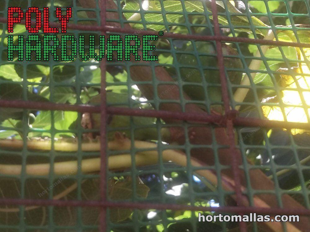 protección de arboles frutales