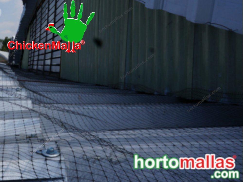 Malla anti palomas protección facil instalación
