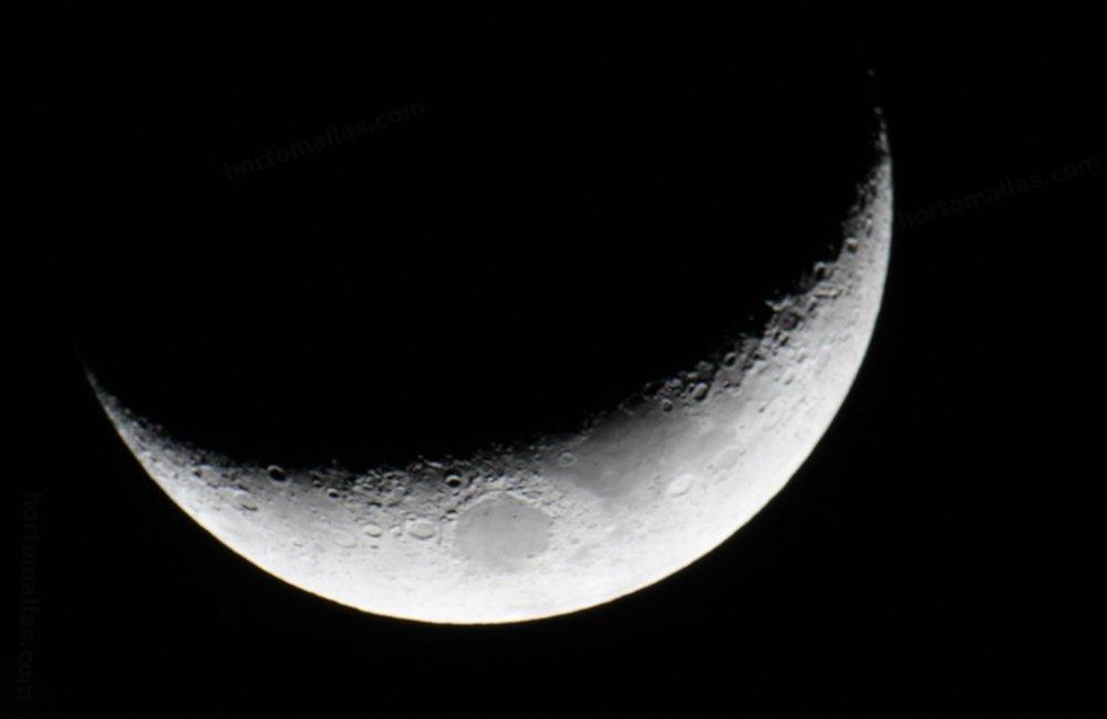 cuarto creciente luna tutoreo