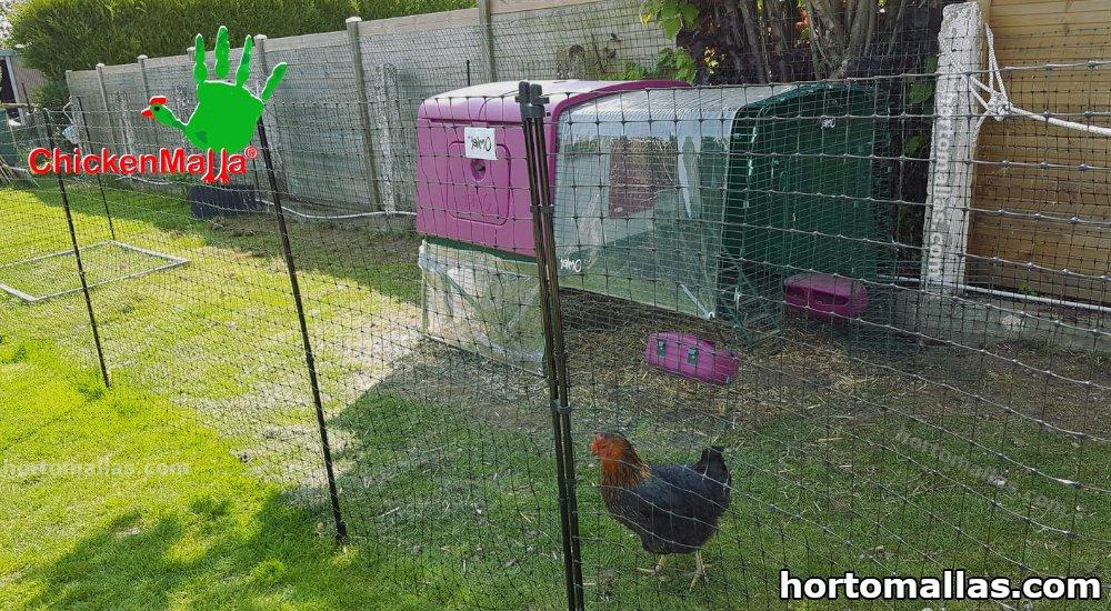 malla para pollos
