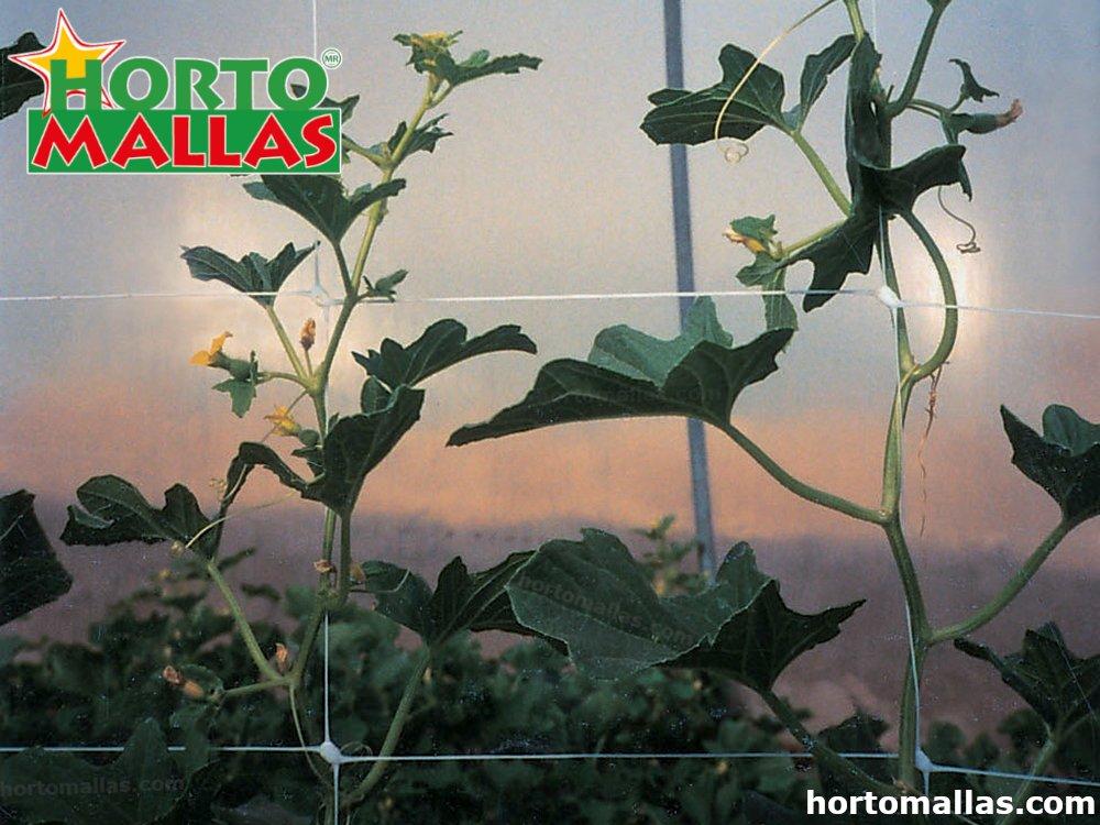 HORTOMALLA en cultivos