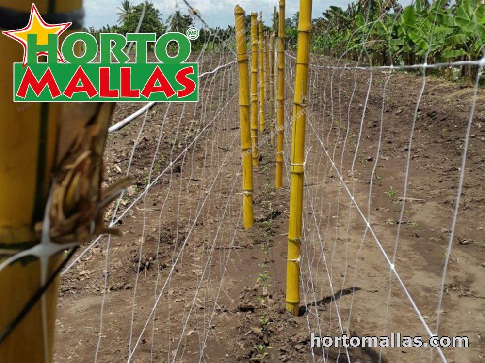 double wall trellis netting