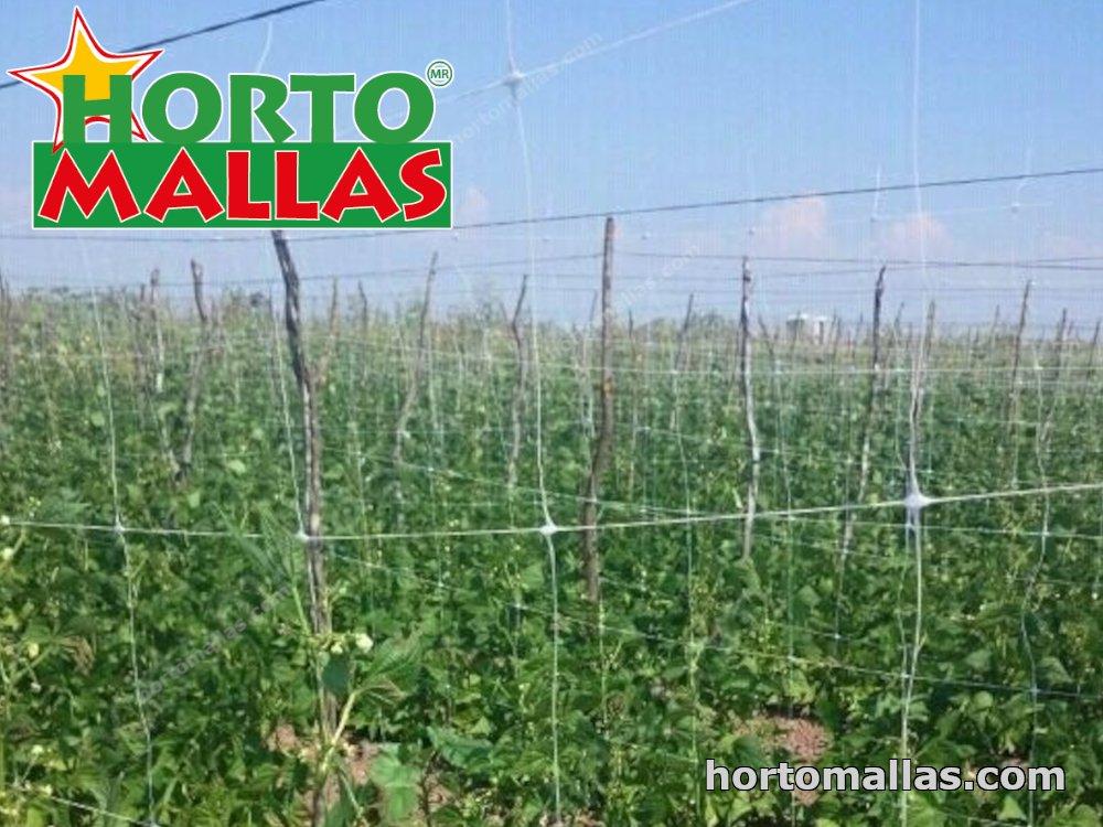 types of trellis netting