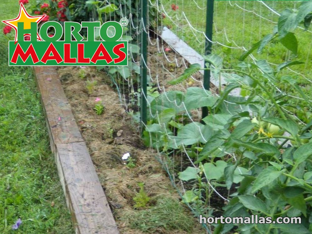 planter with trellis netting for crop support