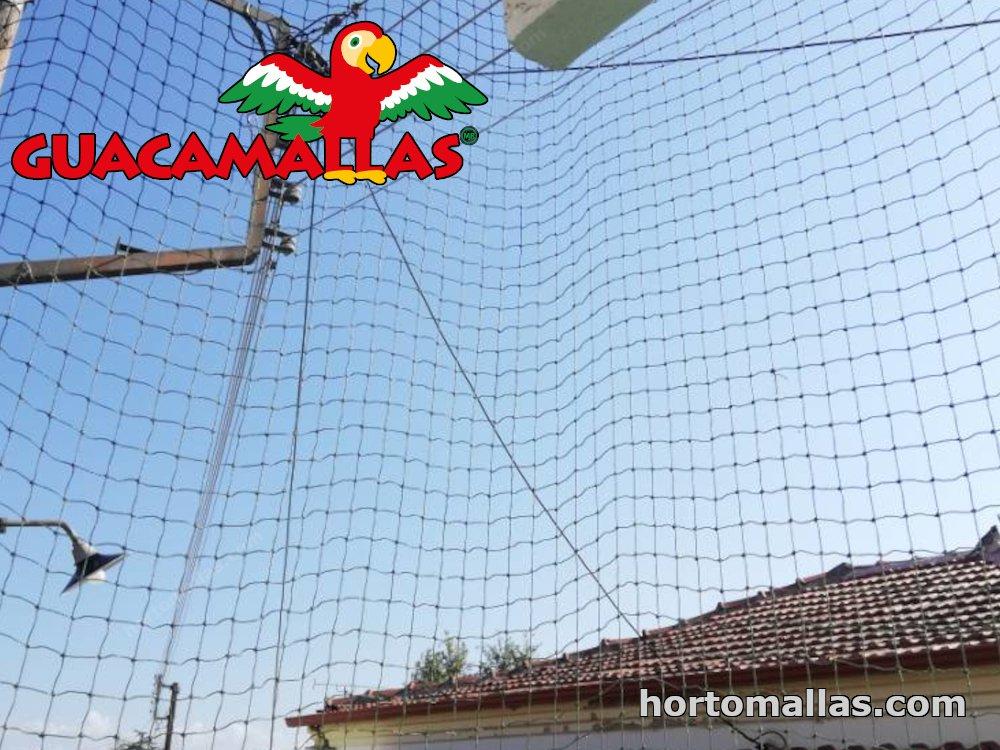 bird control with pigeon net