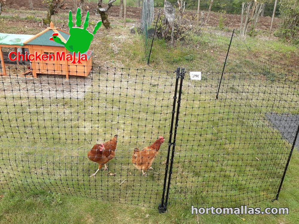 Chickenmalla poultry wire mesh