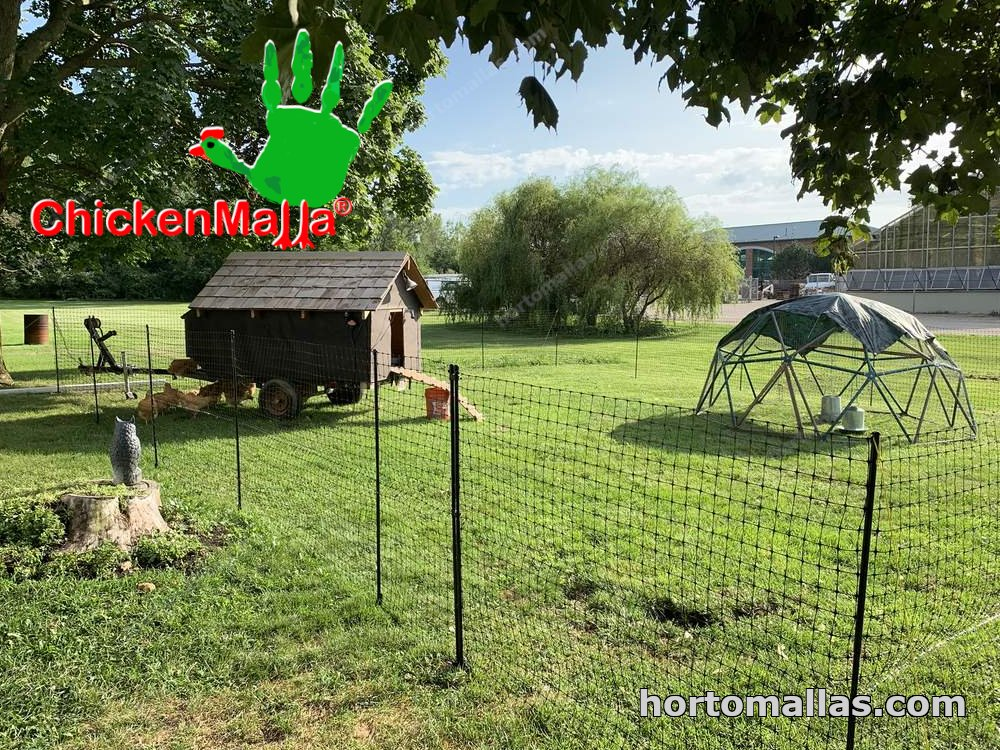 chicken net install on garden