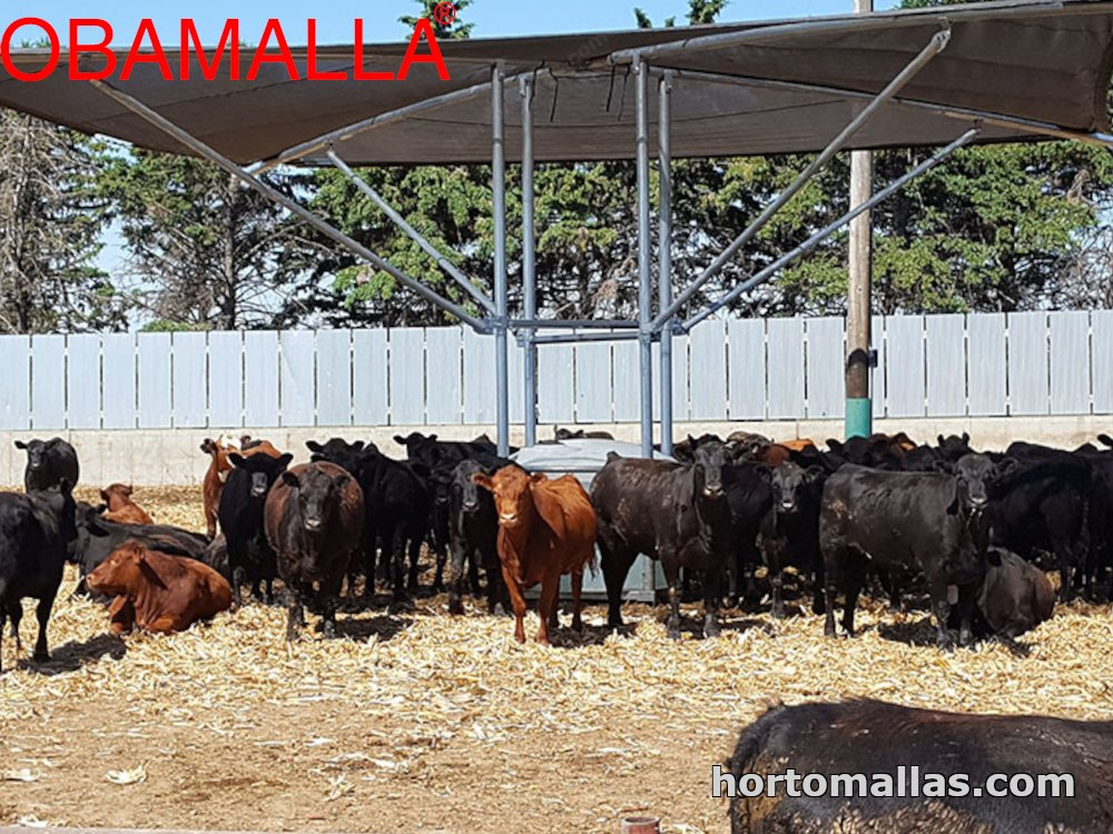 OBAMALLA® used for Livestock protection