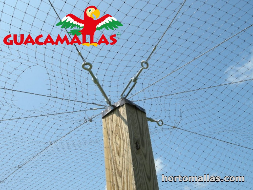 plastic netting for pigeon control installed over a building´s countryard
