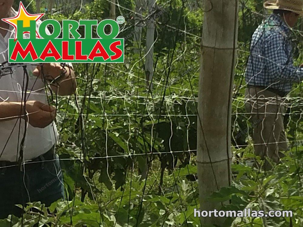 installation of hortomallas support net