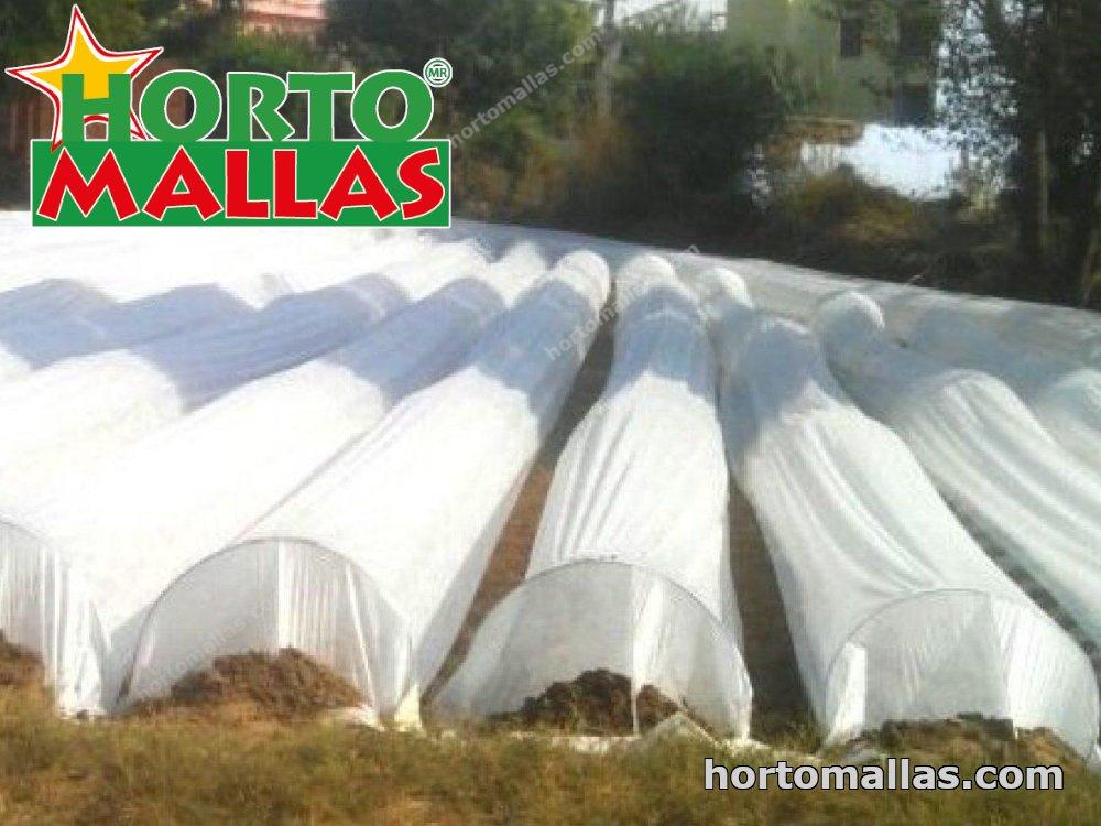 micro tunnels in cropfield