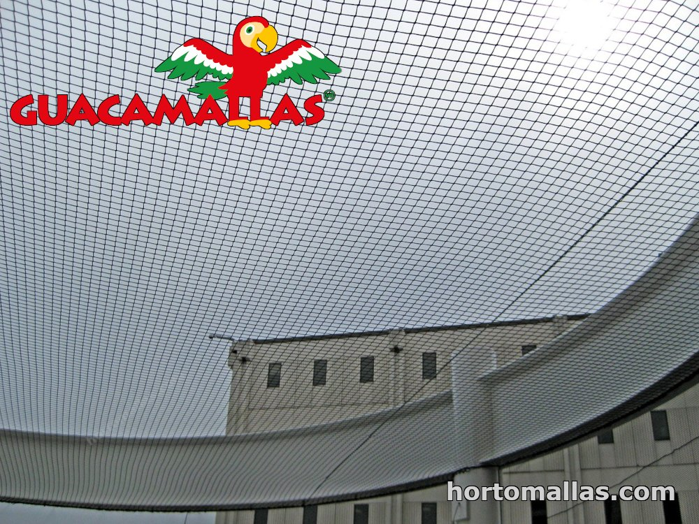 bird net installed on building