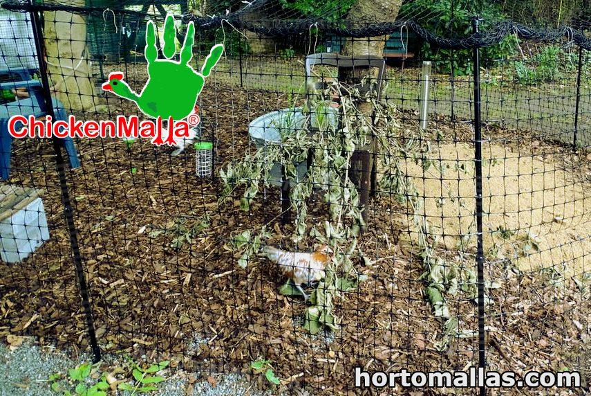 anti bird mesh in pond