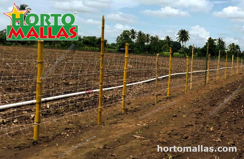 end posts of cucumber support netting