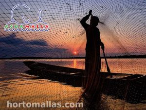 Bird Protection in fish ponds, aquaculture