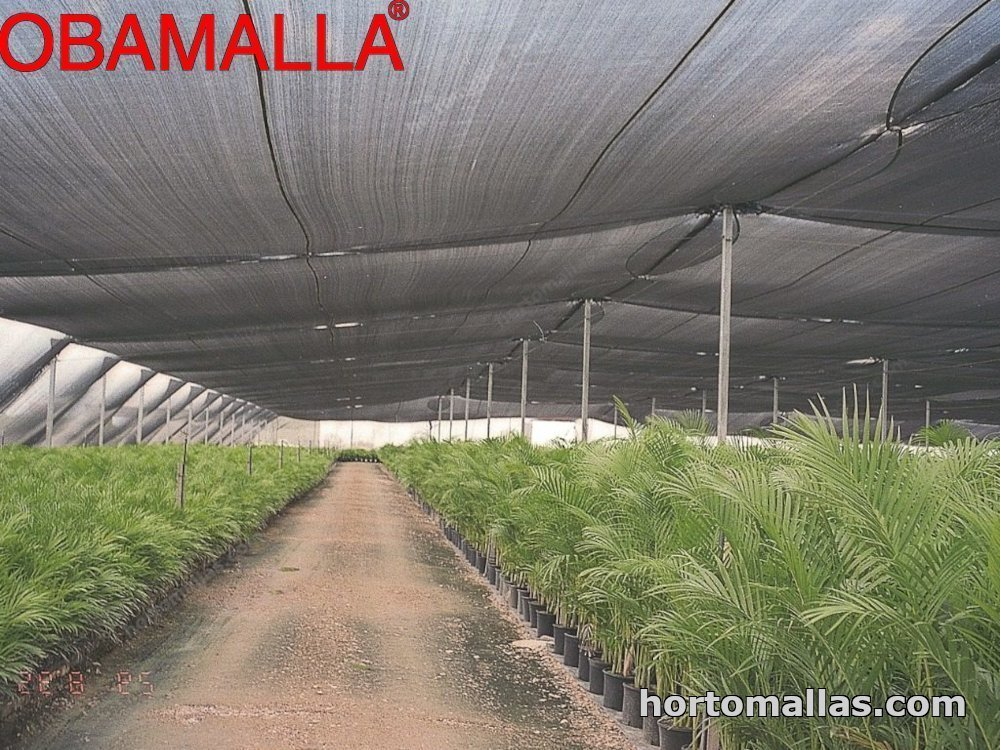 malla sombra OBAMALLA® sobre un invernadero de plantas