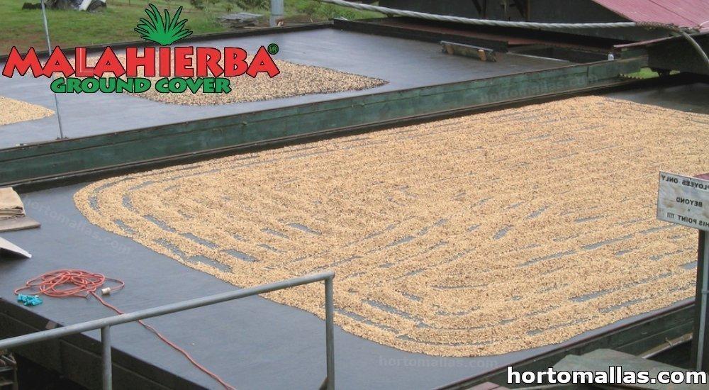 malla POLISOMBRA® para secado de café