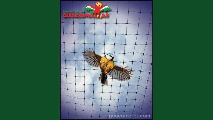 GUACAMALLAS® repeliendo pájaro